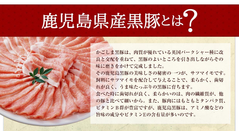 鹿児島市ふるさと納税人気ランキング1位の鹿児島県産黒豚とは?かごしま黒豚は、肉質が優れている英国バークシャー種に改良と交配を重ねて、黒豚のよいところを引き出しながらその味に磨きをかけて完成しました。その鹿児島黒豚の美味しさの秘密の一つが、サツマイモです。飼料にサツマイモを配合して与えることで、柔らかく、歯切れが良く、うま味たっぷりの黒豚に育ちます。食べた時に歯切れが良く、柔らかいのは、肉の繊維質が、他の豚と比べて細いから。また、豚肉にはもともとタンパク質、ビタミンB群が豊富ですが、鹿児島黒豚は、アミノ酸などの旨味の成分やビタミンEの含有量が多いのです。